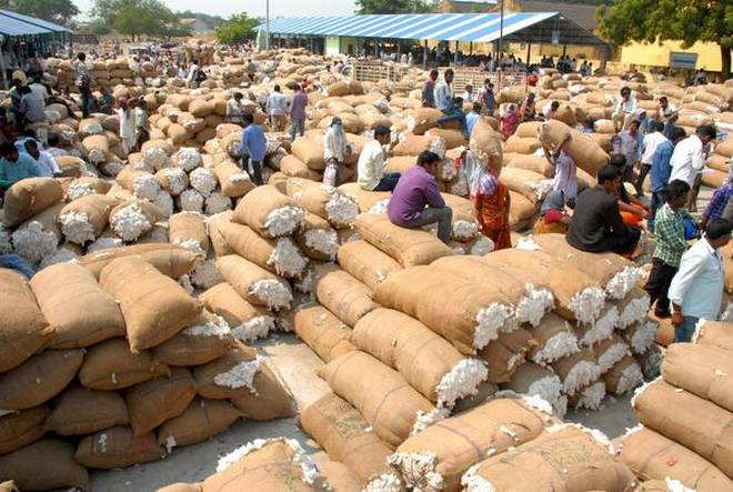 Agri commodity trading in India-4